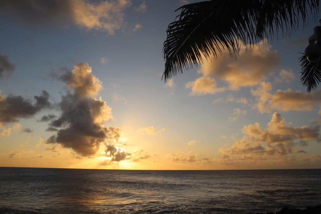 Linda Hawaii Strand Sonne Wochenrückblick Plmen 2