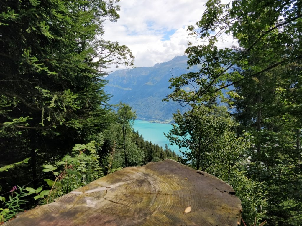 Interlaken Harder Kulm Wanderung