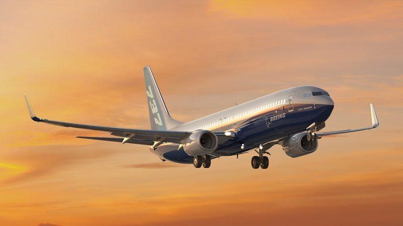 Boeing 737 Max Flight Bild Flugzeug
