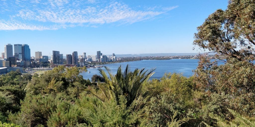 Kings Park And Botanic Garden Perth 2 1024x512
