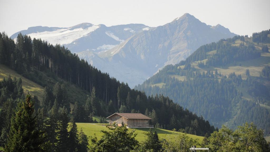 Gstaad Alpen