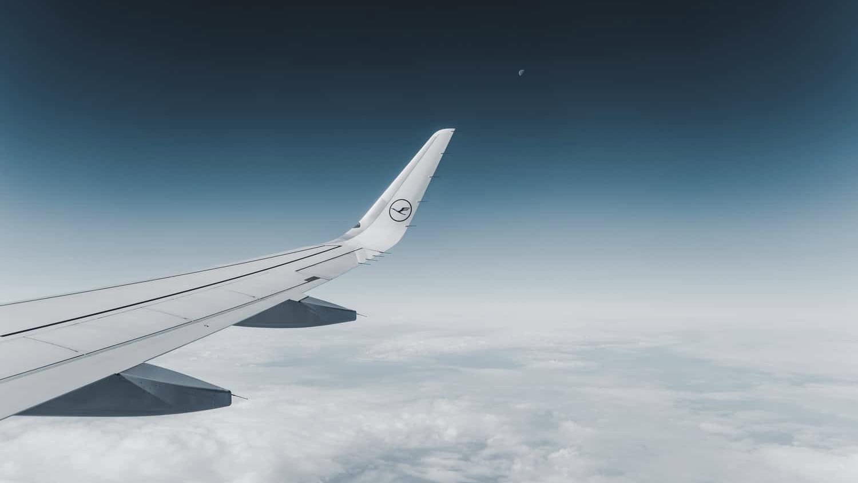 Lufthansa Wing
