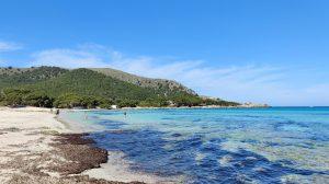 Cala Agulla Mallorca 2