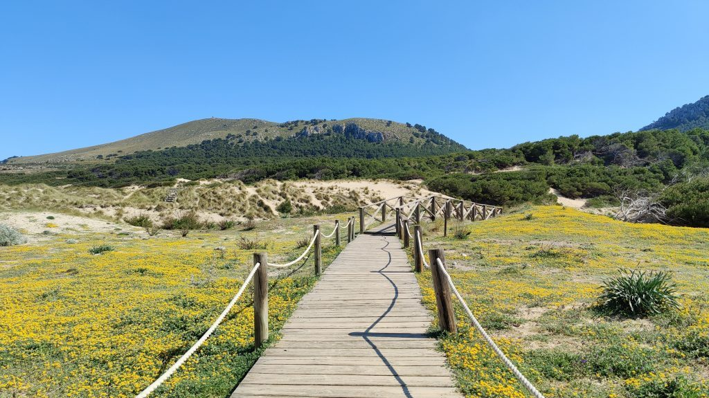 Cala Mesquida Mallorca 1024x575