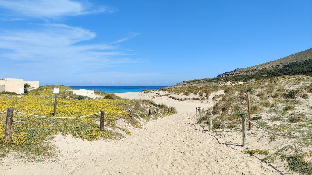 Cala Mesquida Mallorca 2