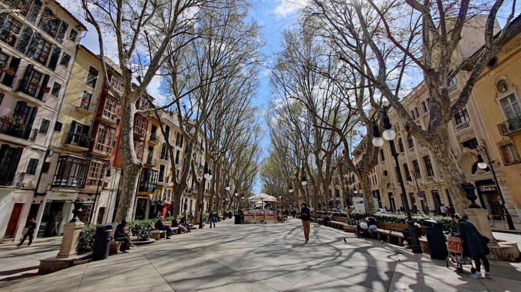 Passeig Del Born Palma De Mallorca 1024x575 1