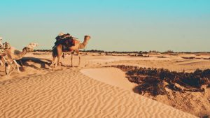 Tunesien 1