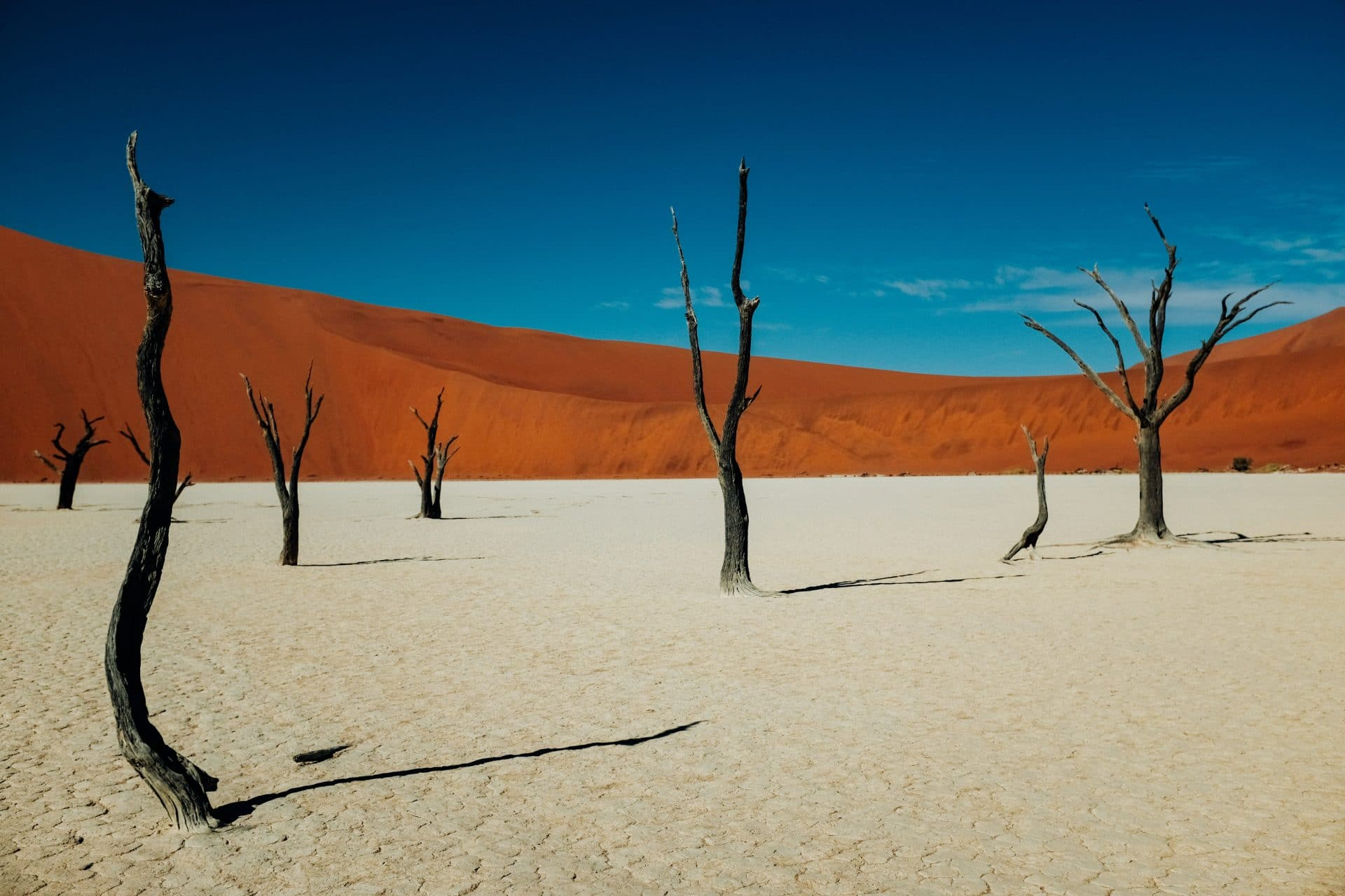 Namibia Death Valley